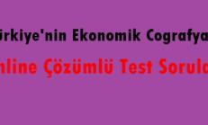 Türkiye'nin Ekonomik Coğrafyası Online Çözümlü Test Soruları