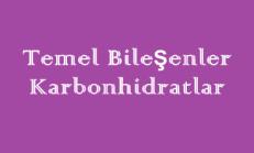 Temel Bileşenler – Karbonhidratlar – Online Test