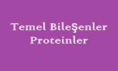 Temel Bileşenler – Proteinler Online Test