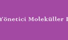 Yönetici Moleküller 1 – 9. Sınıf Biyoloji Online Test