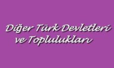 Diğer Türk Devletleri ve Toplulukları Online Test