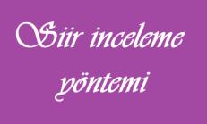 Şiir İnceleme Yöntemi – (Şiirde Yapı, Tema, Şiirin Şairle ve Yazıldığı Dönemle Temanın İlişkisi)