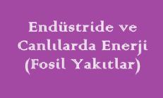 Endüstride ve Canlılarda Enerji – 1 (Fosil Yakıtlar) Online Test
