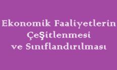 Ekonomik Faaliyetlerin Çeşitlenmesi ve Sınıflandırılması Online Test