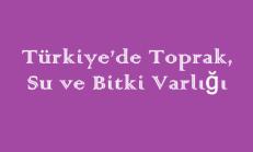 Türkiye'de Toprak, Su ve Bitki Varlığı Online Test