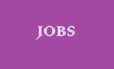 İngilizce Jobs (Meslekler) Konusu İle İlgili Online Test Soruları Çöz