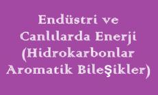 Endüstri ve Canlılarda Enerji (Hidrokarbonlar – Aromatik Bileşikler) Online Test