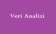 Veri Analizi Online Test