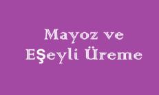 Mayoz ve Eşeyli Üreme 3 Mini Online Deneme Sınavı