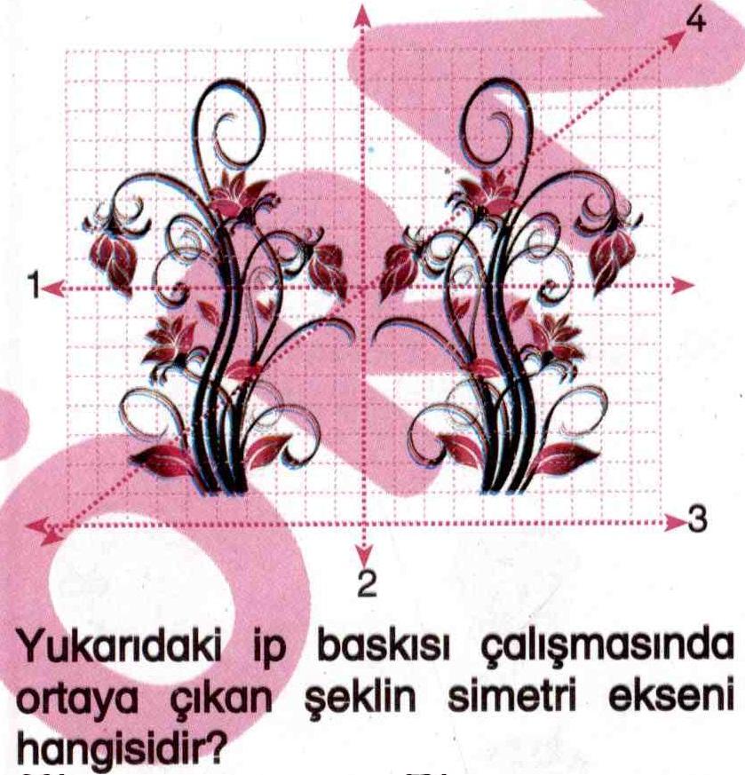 İp baskısı çalışmasında simetri ile ilgili soru