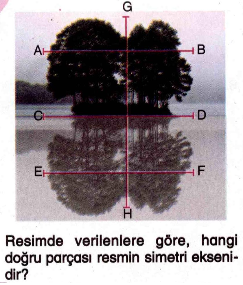 Resmin simetri doğrusu ile ilgili soru